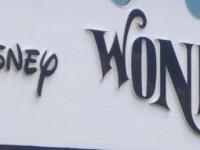 Wonder(1)